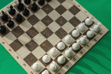Positions of black and white figures before the game. Planning, analysis of the first move. Confrontation, the beginning of the party. View from above.