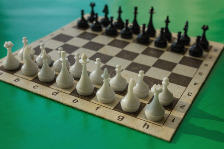 Black and white pawns and figures on a chessboard. Initial position, evaluation of enemy forces. Green background, side sunlight.