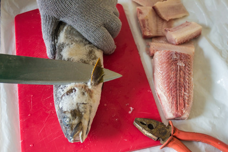 Frozen fish for cooking a national dish from raw salmon fish. Hand in a special glove, a big knife and pliers for skin removal. Cuisine of the peoples of the North, the Aborigines of the Far East. Banque d'images