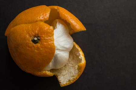 Garlic in a tangerine skin against a dark background. Vain hopes, deception, hypocritical people. View from above.