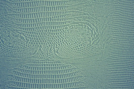 Blue, light green, silvery surface, a coating that mimics the skin of a snake. Characteristic embossing, small cells.