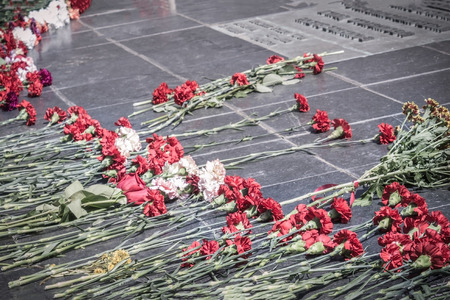 Red carnations on a granite slab. Memorial to the heroes of the war, the fallen soldiers. Heroism, the heroic deed of the defenders of the Motherland.