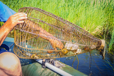Top, homemade basket of twigs, an ancient way of fishing. Blue lake, river, water, on the shore of green grass. The height of summer, outdoor recreation.