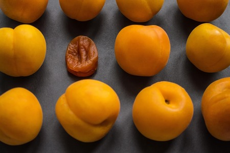 Shagged apricot among fresh, juicy, young. Aging, age changes, young competitors. The concept. Dark background, daylight. 版權商用圖片