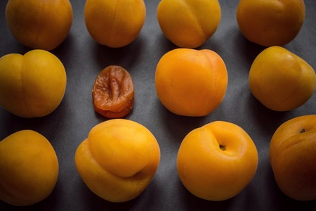 Fresh, juicy, yellow apricots. One old, dry, withered. Misunderstanding, loneliness, different generations. Age changes, deterioration of appearance. Dark background, vignetting.