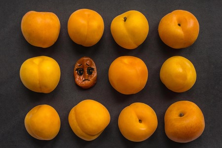 Among the fresh, young, juicy apricots is one old, wrinkled. Age changes, problems, deterioration of appearance. Top view, dark background. The picture is made by the author.