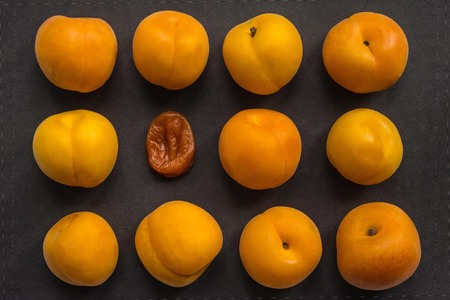 Dry, withered apricot among fresh, yellow, juicy. Aging, wrinkles, age changes. Retired in a youth team. Dark background, top view.