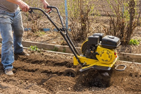A man plowing land with a walking tractor. Spring work in the garden, preparing for planting. Country house, farm, garden, natural conditions.