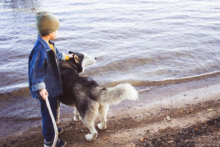 True friends, friendship. A little boy in a denim jacket and a big dog on the nature, near the water, on the beach. Daylight, copy space. Stock Photo