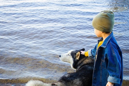 The boy is petting a big dog by the river. The dog closed his eyes with pleasure. True friends together. Side view. Daylight, copy space.