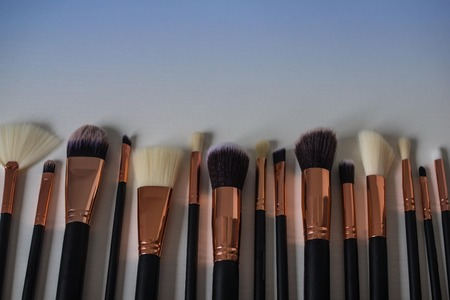 A set of brushes for makeup. Different sizes and shapes. Creativity, visage, image creation. Blue toning, save space. Imagens