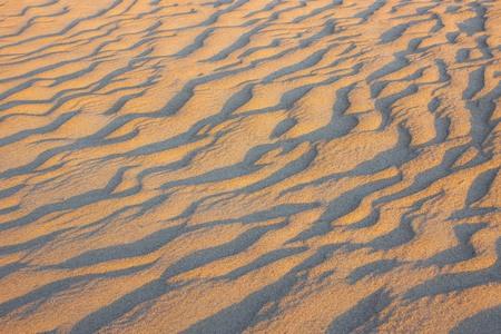 Evening desert, low solar lighting. Cold sand, fancy winding shadows. Natural texture.