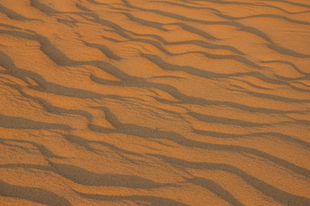 Sand texture, natural surface, shore. Wavy lines, abstraction. Imagens - 122434501