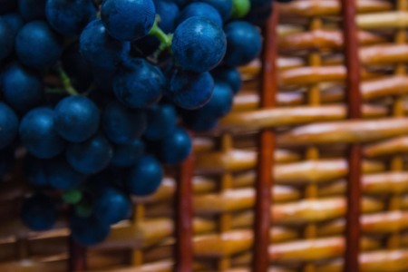 Grapes in the village, vineyard, viticulture. Dark grapes on a wooden, brown surface. The background is blurred. Imagens