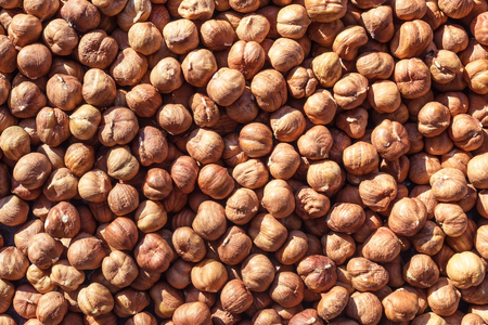 The bright sun shines on a large number of hazelnuts. A good harvest, a useful product. Vegetarian, lean menu. Source of vegetable protein, energy food.