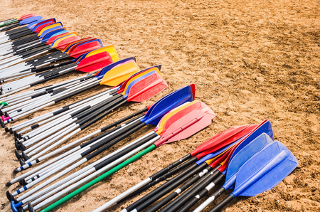 Many oars on the sandy shore. Joint, teamwork, common task, upcoming work. Personal contribution to the common cause. Concept.