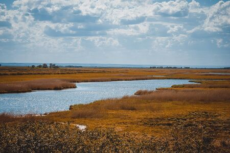 Blue sky, yellow, withered grass. Away lake, water, river. Rural landscape. Sunny day. Toning. Imagens