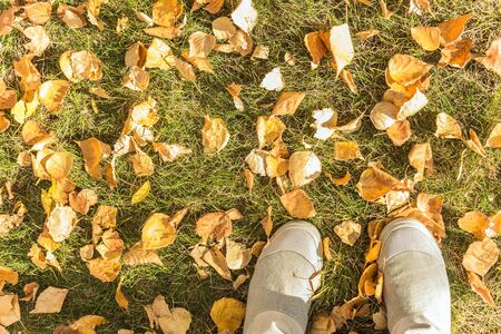 Feet on the green grass, bright shoes, boots. Around the fallen yellow leaves. Top view, vintage toning.