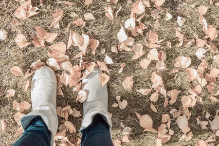 Autumn park, fallen leaves. Sideways female legs in light boots. Muffled tones. Top view, side sunlight.