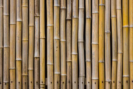 Background brown bamboo, natural surface. Wall, fence, bamboo furniture. Vertical stripes.