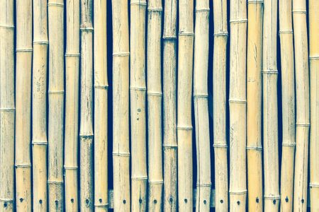Bamboo surface, vertical stripes. Below is a row of nails. Asia, Vietnam. Vintage toning. 版權商用圖片