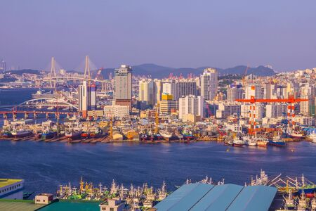 Busan seaport, ships in the harbor. In the distance are tall buildings, a bridge, hills. There are many ships off the coast. Early evening, sunny lighting.