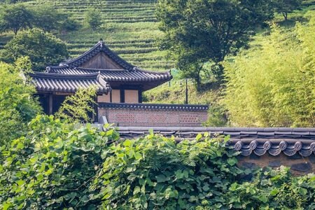 Korean manor, old house, tiled roof. Countryside, province. Around green trees, farm. Solar lighting.