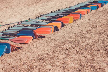 Oars for rowing lie on the sand. Friendly team, mass sport, teamwork. Sunny day, summer. Toning. Stock Photo
