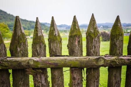 A look at the world through thick logs of a fence. Prohibition, closed territory, border. Summer day, daylight. Imagens