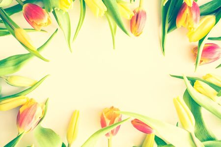 Bright tulips on a light background. Congratulations on the holiday, best wishes, fun, joy. Top view, toning.