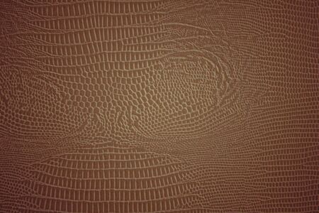 Imitation of the skin of a snake, a characteristic drawing of a python skin. Warm brown and golden colors, daylight.
