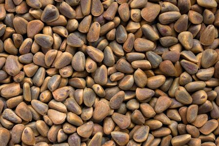 Light and dark brown nuts. Smooth surface of small pine nuts. A new crop. Useful product, proper nutrition. Foto de archivo