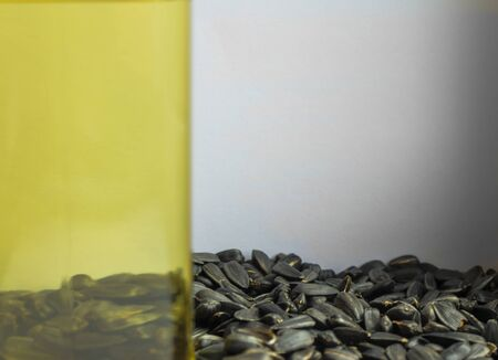 Side of the vegetable oil in the glass, through it are visible black seeds. Raw materials for the production of oil. Behind it is a light gray background. Foto de archivo