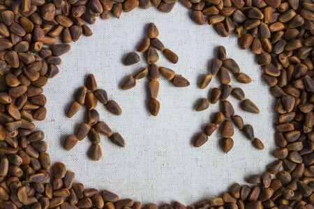 Background of cedar nuts, in the middle of a light circle of canvas. In the center there are three spruce, made up of nuts. 版權商用圖片 - 143785934