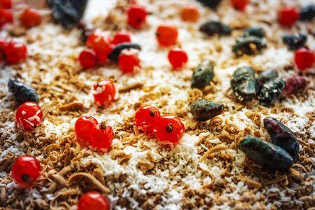 Delicious homemade cake, simple recipe. Summer dessert, a festive dish. Side lighting. The far plan is blurred. Foto de archivo - 146434720
