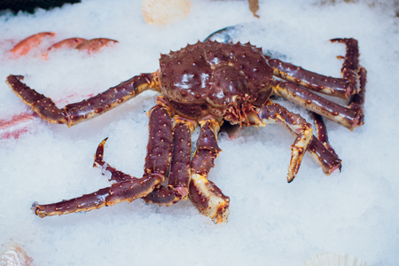 King Red Crab on ice close-up