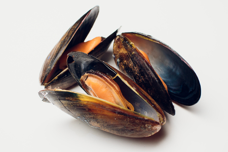 Boiled mussels on a white background seafood Banco de Imagens - 95154804
