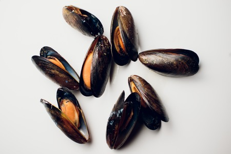 Boiled mussels on a white background seafood
