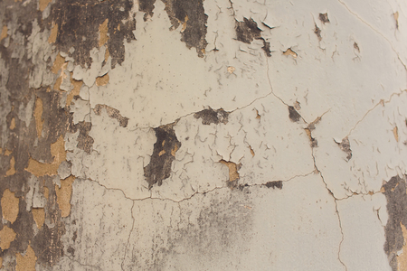White Plastered Brick Wall Texture. Whitewash Brick Wall Seamless Surface. Abstract White Wash Background. White Brickwall Wallpaper. White Painted Retro Wall Built Structure. Banco de Imagens