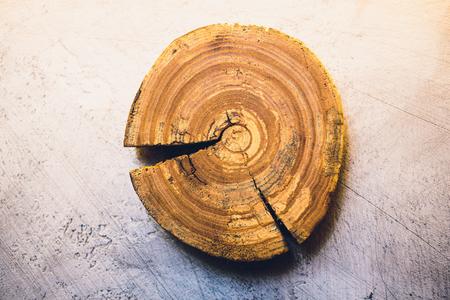 Closeup of timber log. Logs in dark background. Horizontal view