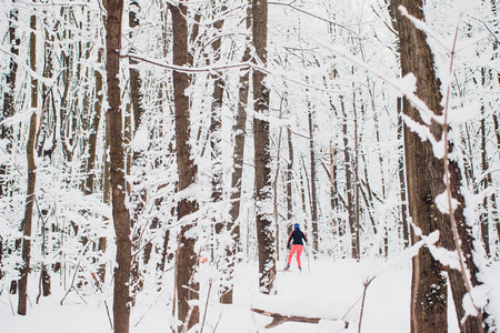 Nordic skier on the white winter forest covered by snow. Stok Fotoğraf