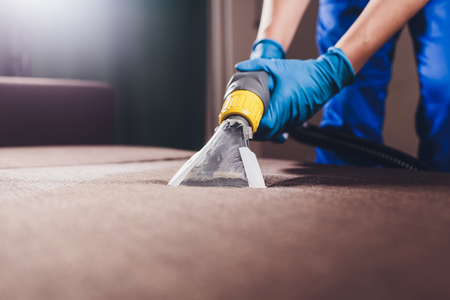 Sofa chemical cleaning with professionally extraction method. Upholstered furniture. Early spring cleaning or regular clean up. Dry cleaner's in light blue protective glove employee removing dirt from furniture in flat Standard-Bild - 115324403