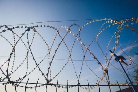 Coiled barbed wire fencing against a blue sky background 写真素材