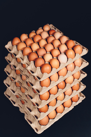 brown eggs Paper trays containers paper many