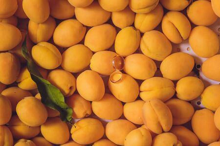 Wedding rings on the apricots. beautiful summer wedding. 版權商用圖片