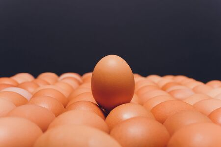 Many eggs lie together on each other, brown eggs, a lot of chicken eggs. Reklamní fotografie