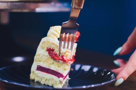 Vanilla ice cream cake with strawberry on top macro. Banco de Imagens