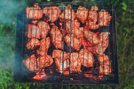 Barbecue grill with skewers. Placed on grass