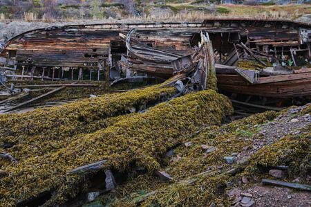 Cemetery of old ships Teriberka Murmansk Russia, wooden remains of industrial fishing boats in sea. Industrialization concept. Aerial top view.