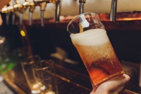 Barkeeper pulling a pint of beer behind the bar. Stock Photo
